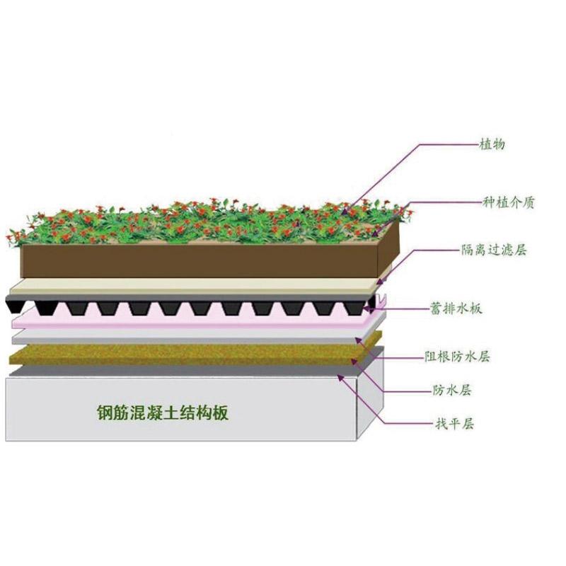 JF-A005种植屋面阻根
