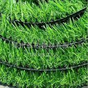 河南仿真草皮,河南仿真草坪,郑州草坪,郑州草皮,郑州围档草坪,郑州围栏草坪