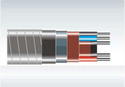 油井自限温伴热电缆系
