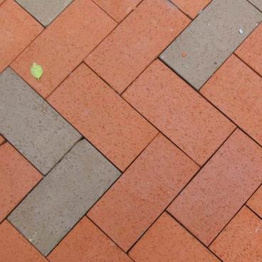 新天力水泥|河北面包砖品牌|衡水面包砖批发