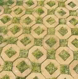 隆尧韩解新天力草坪砖|草坪砖有哪些特性|河北草坪砖效果