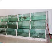 云南|品牌鱼缸直销|云南海母观赏池