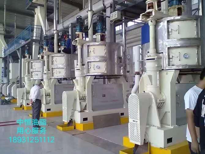 中恒油脂 新疆榨油机设备 四川榨油机设备报价