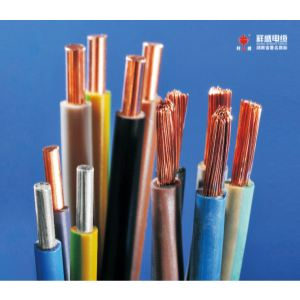 铜(铝)芯聚氯乙烯绝缘聚氯乙烯绝缘及护套固定敷设用电缆(电线)