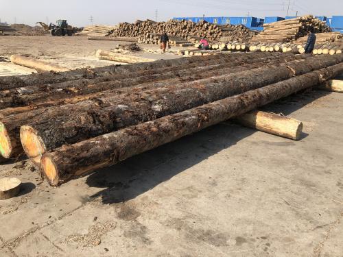 木质包装原料