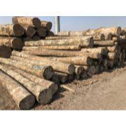 承德建筑木方