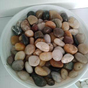 抛光打蜡天然鹅卵石2-3cm