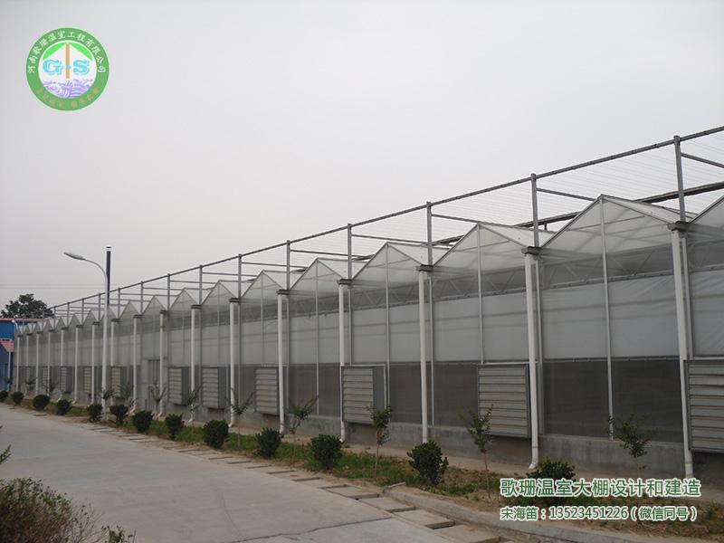河南温室公司,河南温