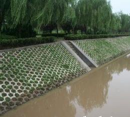北京彩砖厂家
