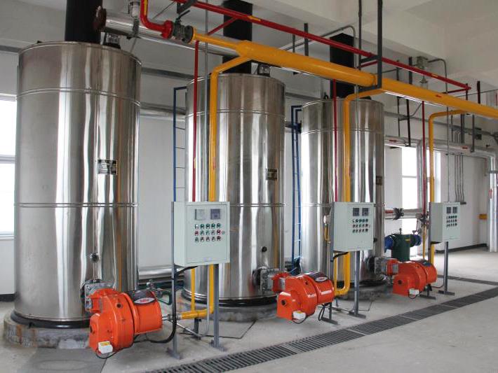立式燃�气锅炉