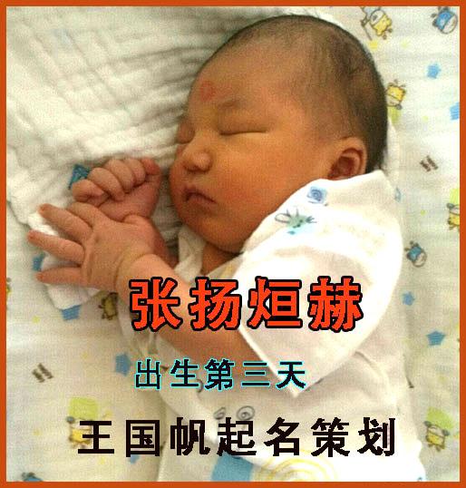 长春宝宝起名张扬烜赫