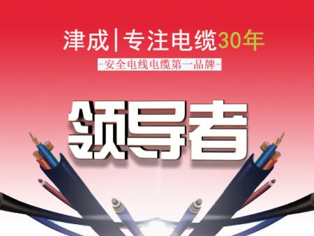 津成电线电缆石家庄办事处_石家庄津成电缆经销处