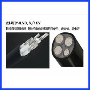 低压辐照交联聚乙烯绝缘电力电缆(0.6-1KV)