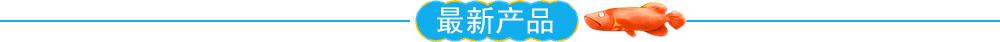 http://files.b2b.cn/skin/2015/0615/a7e7e2200cadb6e64acd1b28c42a8729.jpg图片
