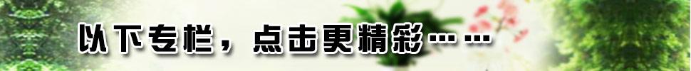 http://files.b2b.cn/skin/2015/0723/ab39557173c49953c9511f968f05a192.jpg图片
