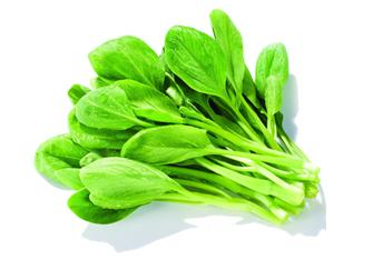 新鲜蔬菜类
