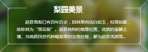 http://files.b2b.cn/skin/2017/0511/35e67c0993c3223011110af6d8816546.jpg图片