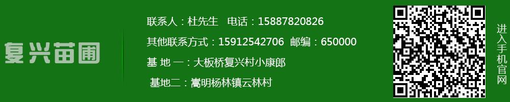 http://files.b2b.cn/skin/2017/0620/5a627d753d1e23da96eaeaefd999a32a.jpg图片