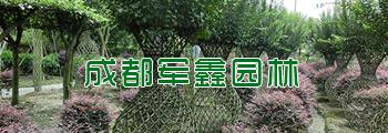 http://files.b2b.cn/skin/2017/0821/d9e96f88df85f25d713adafad17aab0a.jpg图片