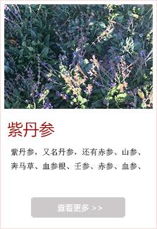 http://files.b2b.cn/skin/2017/1214/71ef186dfc0a77609a924042b5bbc9f2.jpg图片