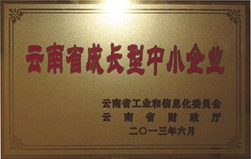 云南省成长型中小企业