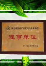 河北省农业产业化龙头