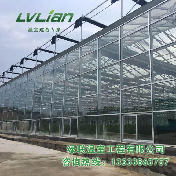 江西德兴玻璃种植温室