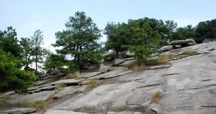 染色岩片主要应用领域