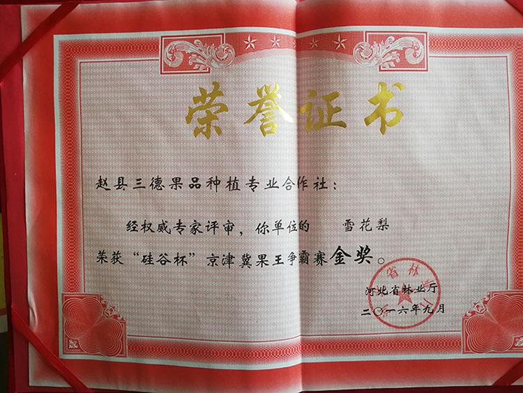 雪花梨荣获硅谷杯京津冀果品争霸赛金奖