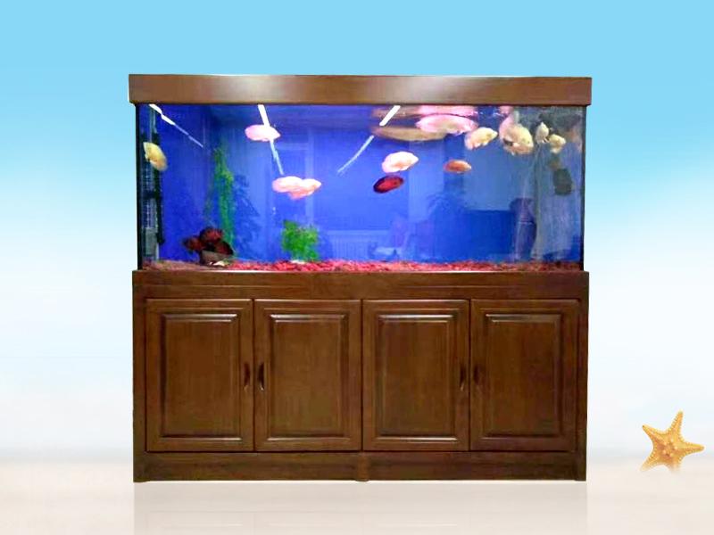 家中要购置实木鱼缸,那么我的鱼缸底柜高度