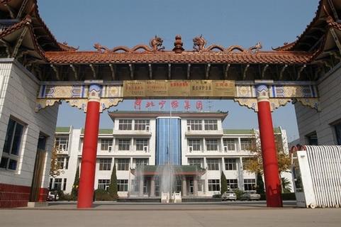 河北宁纺集团项目