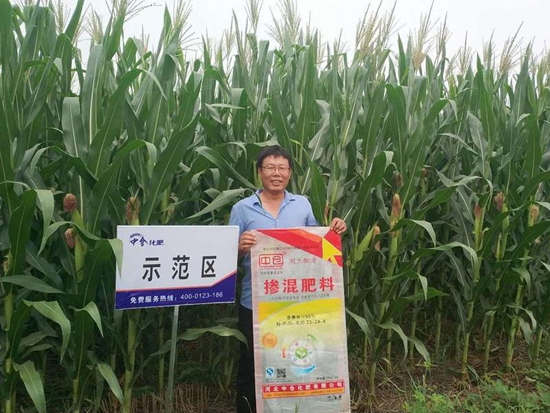 赵录卫在区玉米种植示范基地