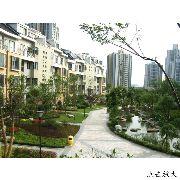 重庆枫林秀水|消防工程