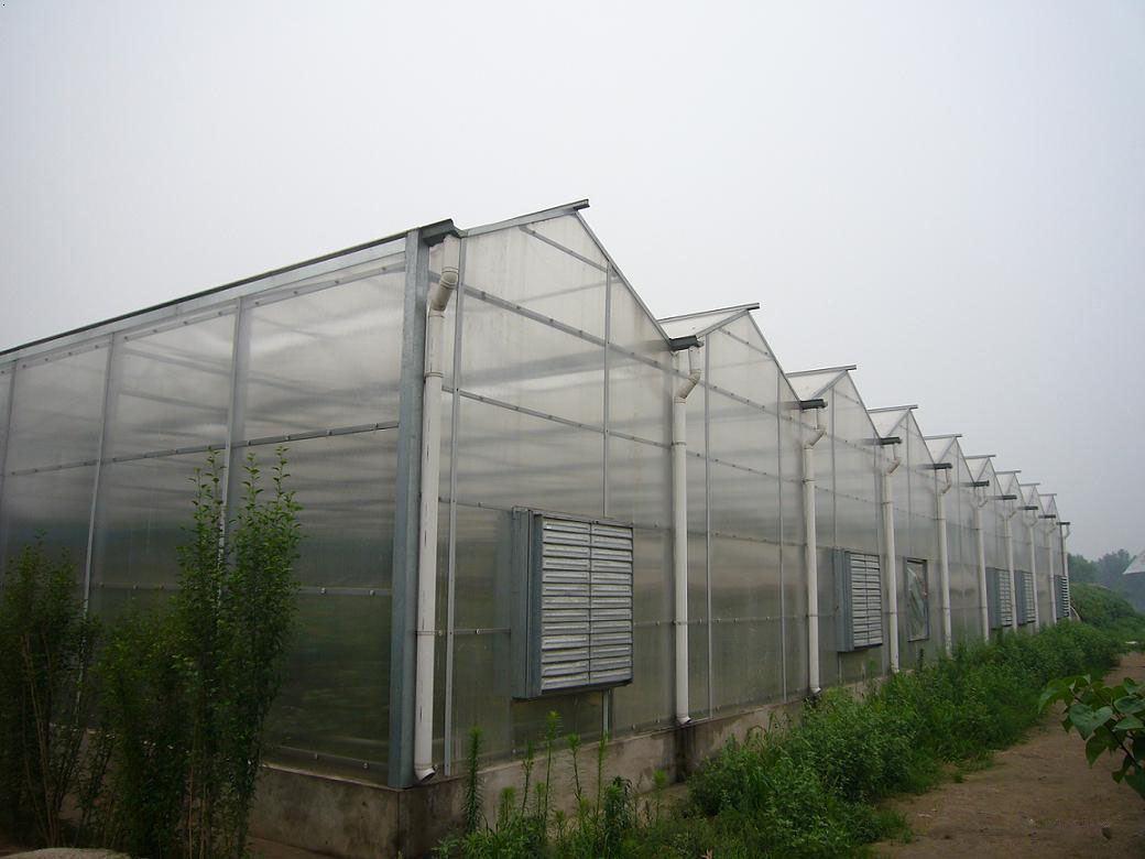 河南阳光板温室