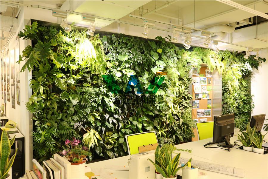 办公室植物墙/写字楼