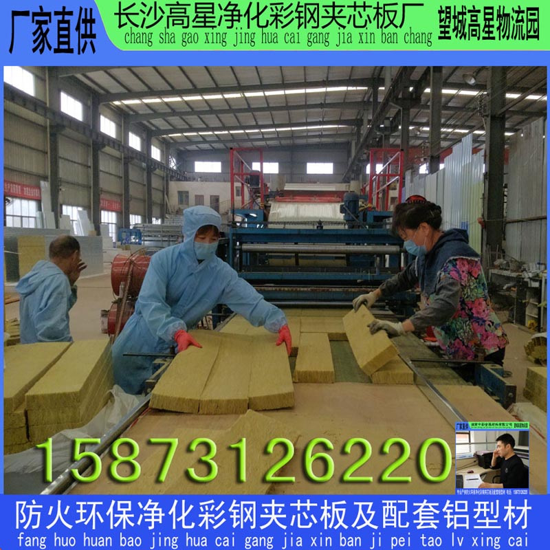 长沙LED电子厂专用彩钢板 电子厂防火岩棉板 电子厂净化无尘车间用夹芯板