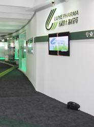绿叶展厅工程案例