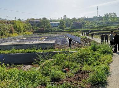 澧县王家厂水库生态环境保护项目